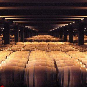 barrel aging cellar