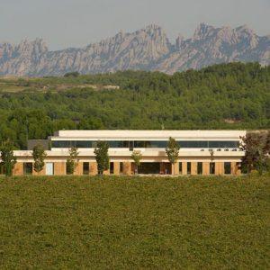 Vilarnau winery and vineyard