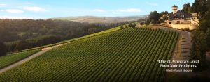 Willamette Valley Vineyards 2