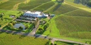 Lindemans winery and vineyard