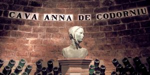 Anna de Codorníu cellar