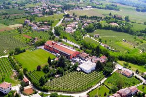 Il Colle winery and vineyard