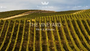 Príncipe de Viana vineyard