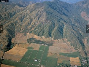 Viña Montes vineyard 3