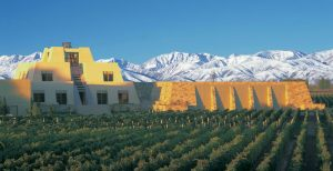 catena-winery