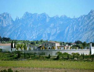 juve-y-camps-winery-views-2