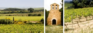 naveran-vineyards-from-website